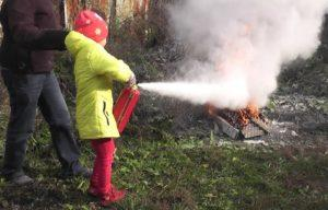 Портативный огнетушитель Pocket Fire Extinguisher