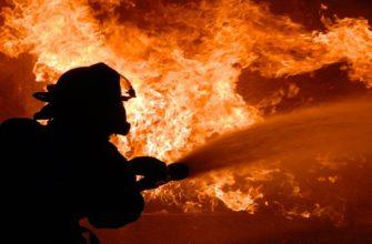 Ответственный за тушение лесных пожаров