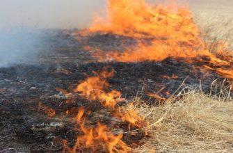 Классификация и тушение степных пожаров