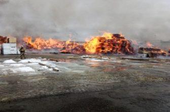 Тушение пожаров на деревообрабатывающих предприятиях