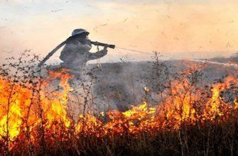 Тушение пожаров в сельских населенных пунктах