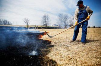 Как использовать пожарную хлопушку для тушения горящей травы