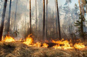 Что такое безводный участок в пожаротушении